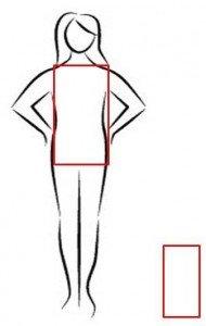 Il fisico a rettangolo è spesso caratteristico delle corporature più longilinee